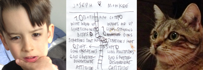 Joseph-v-Monkee