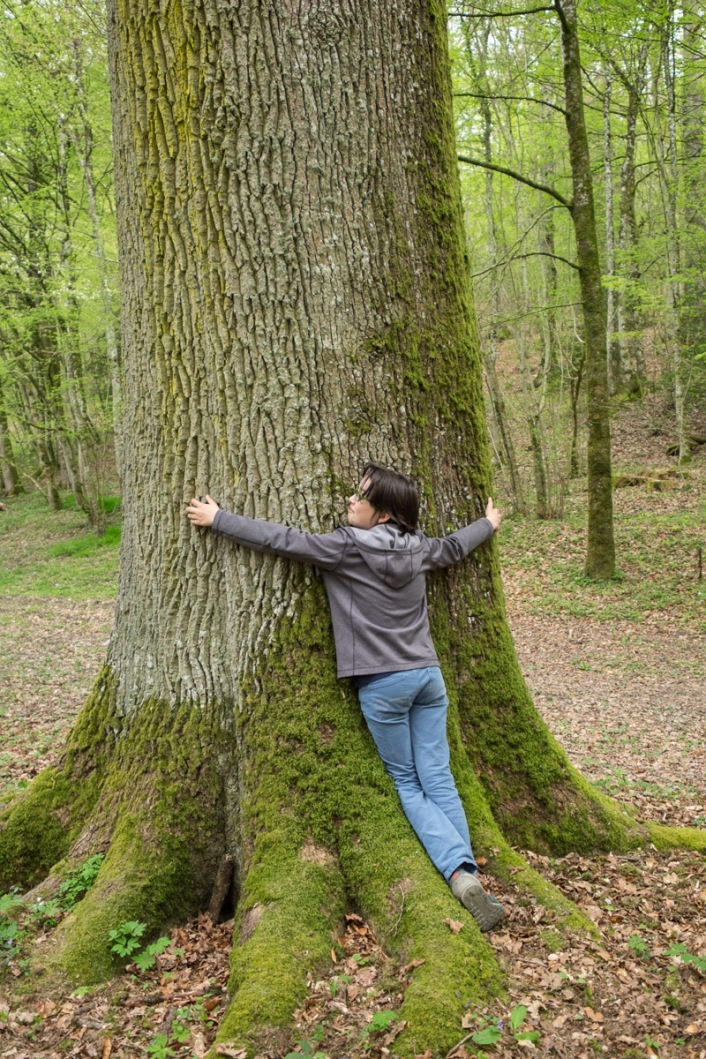 A big(ger) tree hug(ger)?
