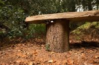 Mushrooms too