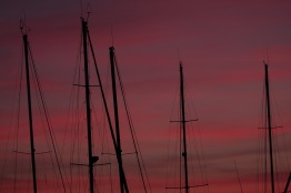 Sunset masts