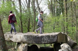 Debate upon the dolmen.